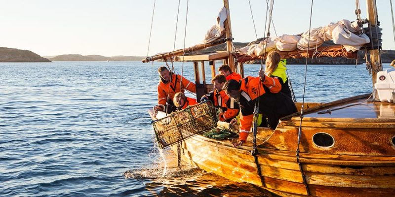 Vissen-voor-de-kust-in-Bohuslan-Zweden