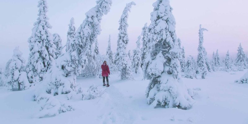 Landschap met dikke pakken sneeuw in Lapland Zweden