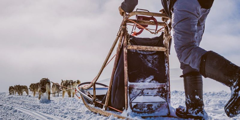 Meerdaagse huskytocht Lapland