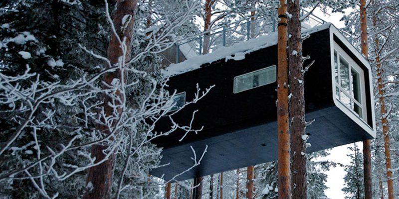 Overnacht-in-een-Cabin-hoog-in-de-bomen