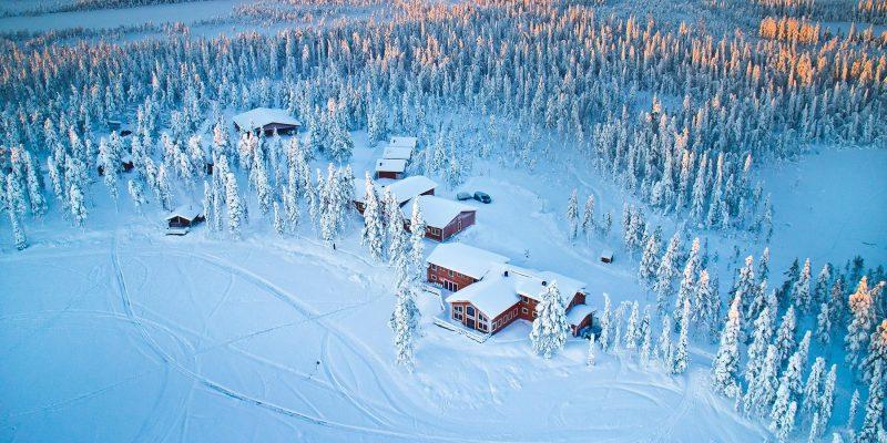 Welkom-in-de-Pinetree-Lodge-(2)