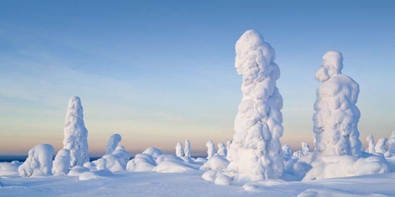Winter landschap in Lapland