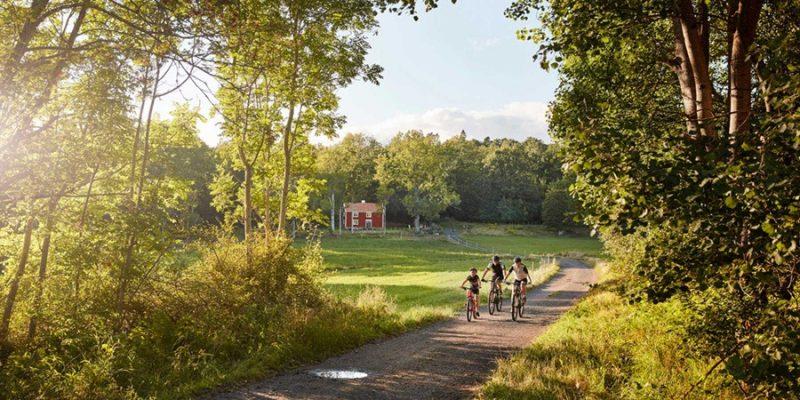 Zweden-zomer-fietsen-met-de-familie