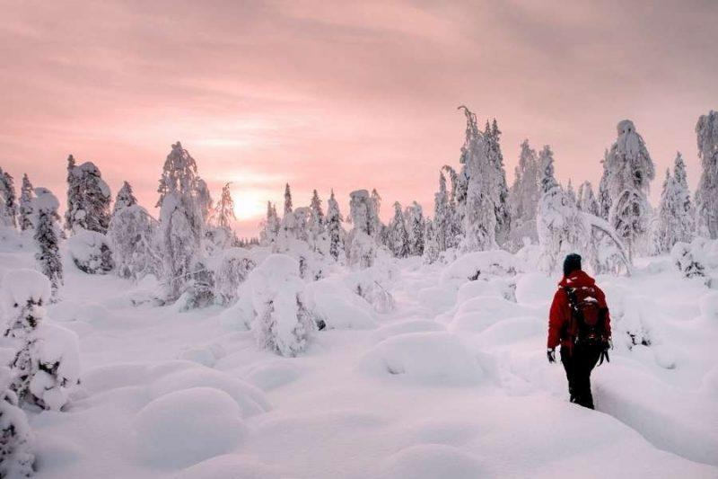 Reizen naar Lapland met Nordic Nederland