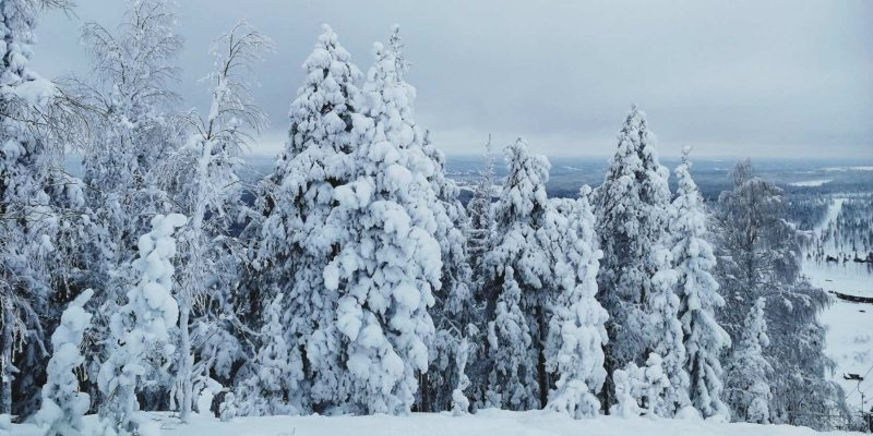 Veilig op reis in coronatijd met Nordic naar Zweeds Lapland