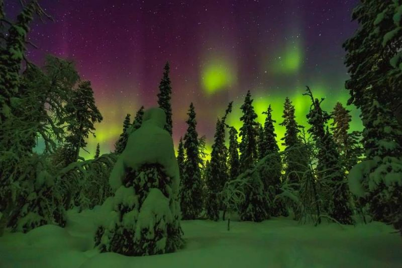 Genieten van het noorderlicht in Lapland met Nordic