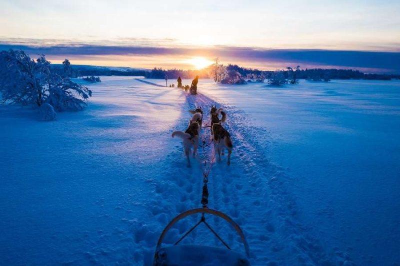 Lapland meerdaagse huskytocht met Nordic