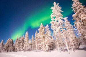 Noorderlicht boven de besneeuwde boomtoppen in Fins Lapland met Nordic