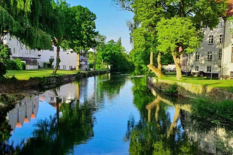 Prachtig groen landschap in Odense in Denemarken met Nordic