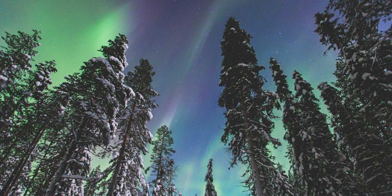 Reis naar Lapland noorderlicht met Nordic Nederland
