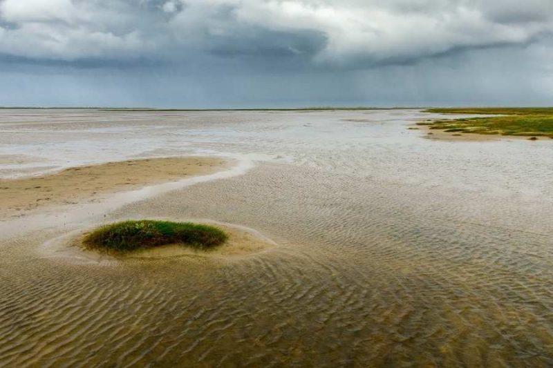 Waddensea Nationaal Park Denemarken