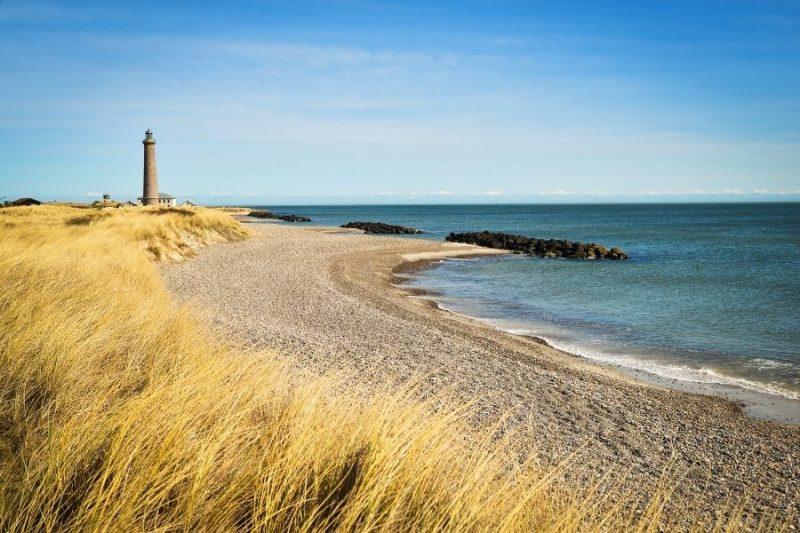Strand-op-gezinsvakantie-naar-Denemarken-met-Nordic-800x533