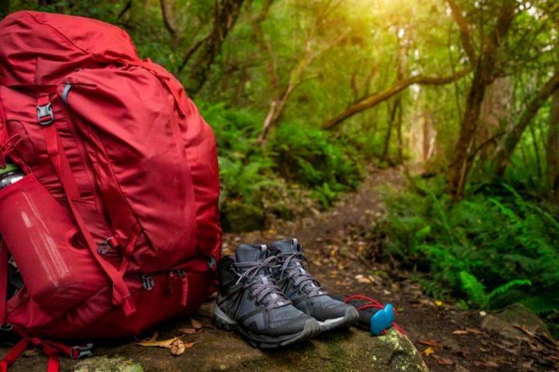 Rugtas en wandelschoenen in een groen bos