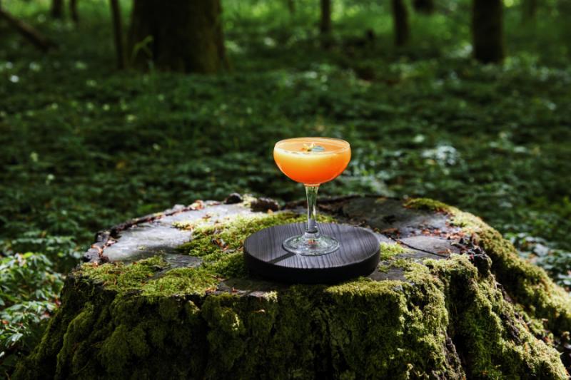 Cocktail in de natuur Zweden