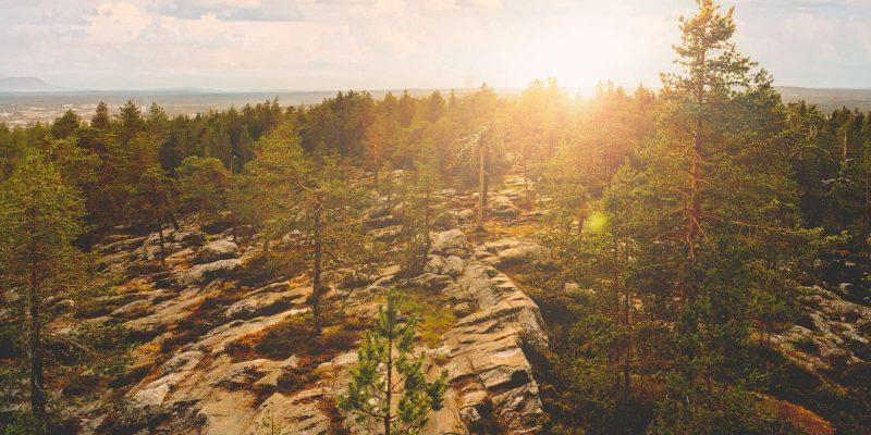 Uitzicht over het landschap in Lapland in de zomer