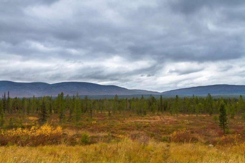 Pallas-Yllas-nationaal-park-lapland-reizen-met-Nordic-800x533